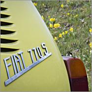 Frühlingshafter Fiatgruß