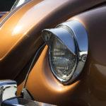 Ein Käfer im Sonnenlicht auf dem Aussengelände – ob er einen neuen Besitzer gefunden hat?