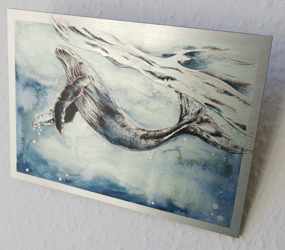 Ein Buckelwal auf Alu-Dibond mit Butlerfinish
