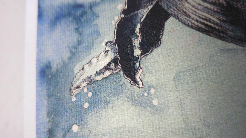 Die vertikalen Streifen sind dem Aquarellpapier und seiner Struktur zu verdanken und kein Druckfehler.