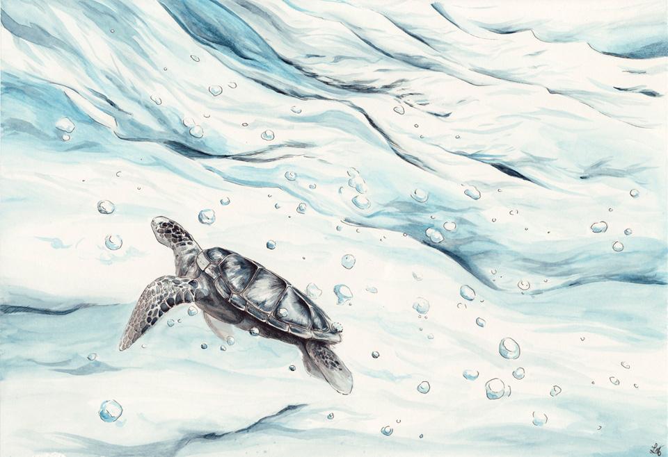Die Meeresschildkröte lässt sich in den Wasserströmen treiben.
