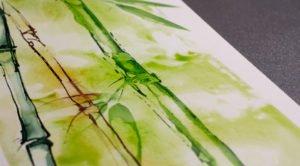 Bambus auf Britannia / Audry Bucks