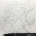 Feine und dickere Outline für die Zeichnung der Monsterapflanze.