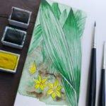 Tropische Pflanzen die wir hier als Topfpflanzen halten blühen leider selten.