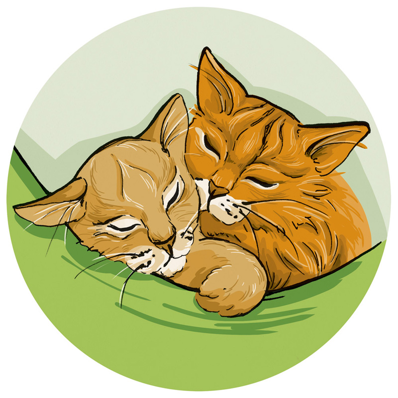 Digitale Coloration: Zwei Katzen schlafen in einer grünen Hängematte.