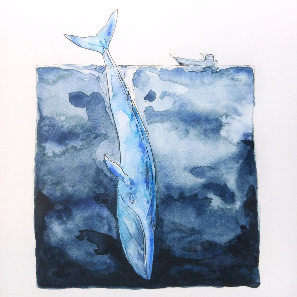 Tuschezeichnung und Aquarellfarben: Der Blauwal taucht ab in das tiefe dunkle Blau des Meeres.