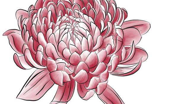 Florales ganz digital