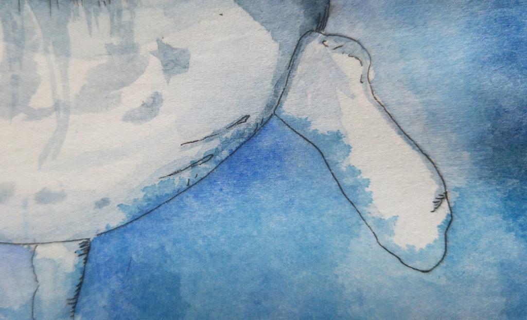 """Der """"Übertritt"""" von Farbe, wenn sich das Wasser weiter in die Fasern zieht als man eigentlich gemalt hat."""
