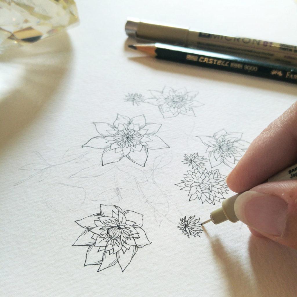 Viele Clematis-Blüten in ihren verschiedenen Stadien von Knospe, Blüte und Samenstand.