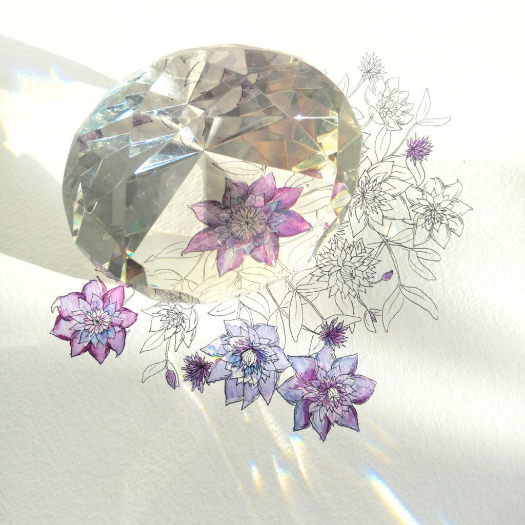 Clematis und Kristall – der geschliffene Diamand (aus Glas) auf der Illustration.