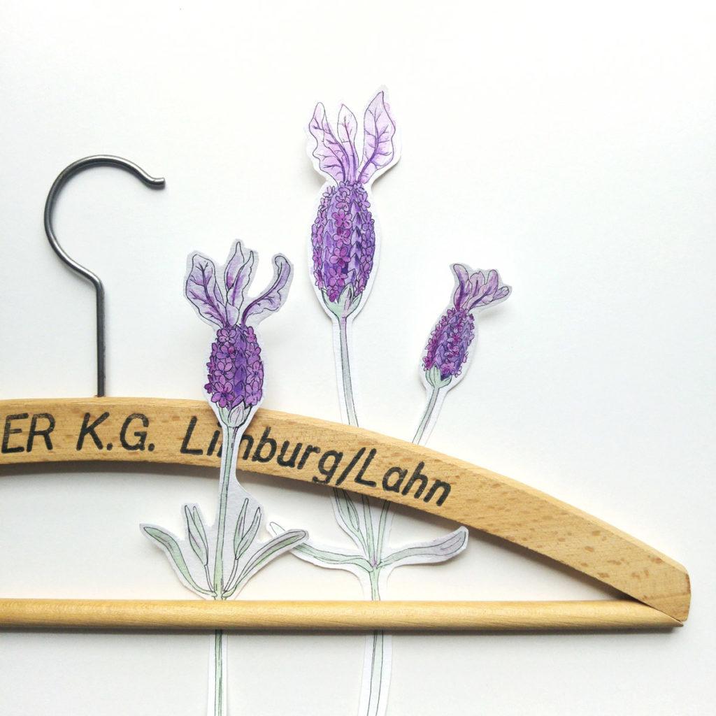 Welche Pflanze passt wohl zu einem Kleiderbügel? Keine besser als der Lavendel, den wir uns in Säckchen abgepackt gern für den guten Duft in den Kleiderschrank hängen.