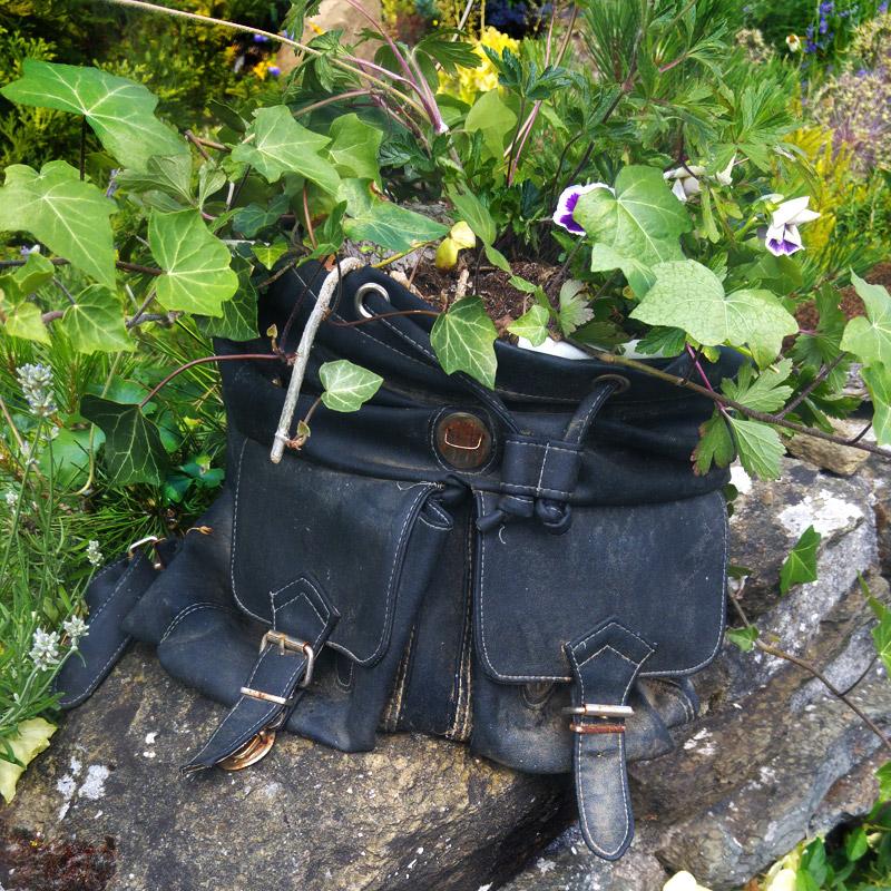 Der Rucksack dient schon seit Jahren als Pflanztopf.