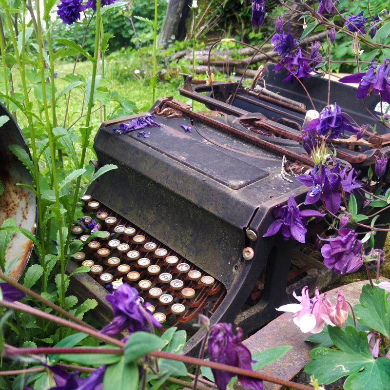 Kaputt und ausgedient – eine neue Bestimmung hat die Schreibmaschine im Garten gefunden.