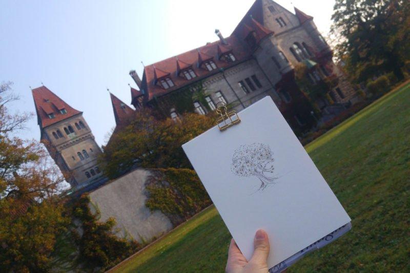 Der Baum mit dem goldenen Apfel im Schlossgarten (hier Beispielhaft das Schloss Faber-Castell in Stein).