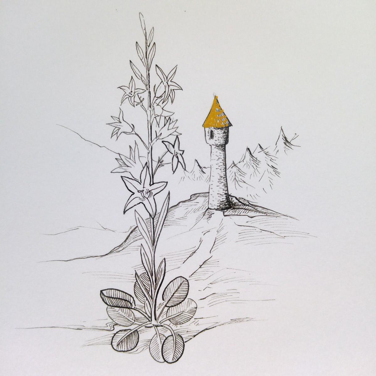 Der Turm in dem Rapunzel von der Hexe gefangen gehalten wurde und im Vordergrund die Pflanze, die ihr den Namen gab.
