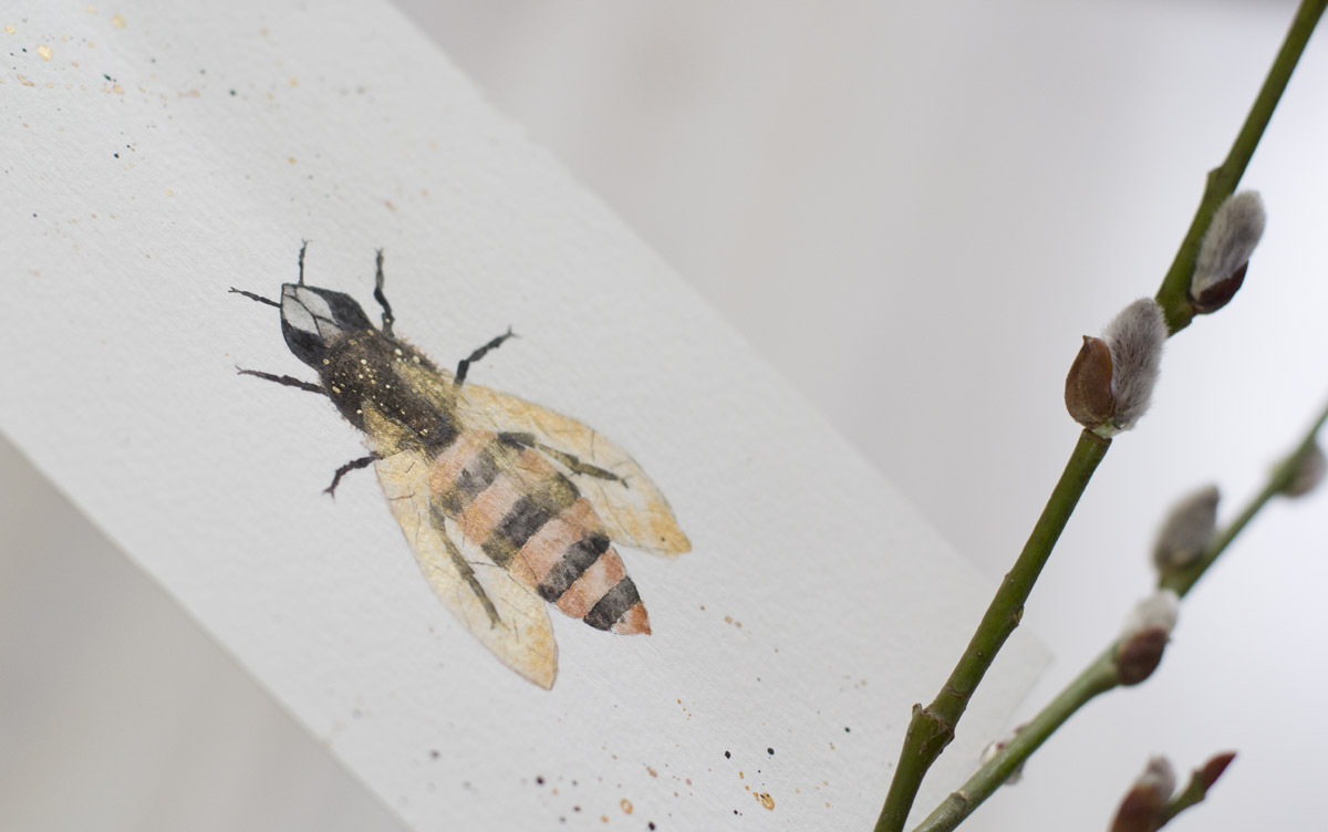Gold schimmern die Flügel von Violas Biene. @zimtographie