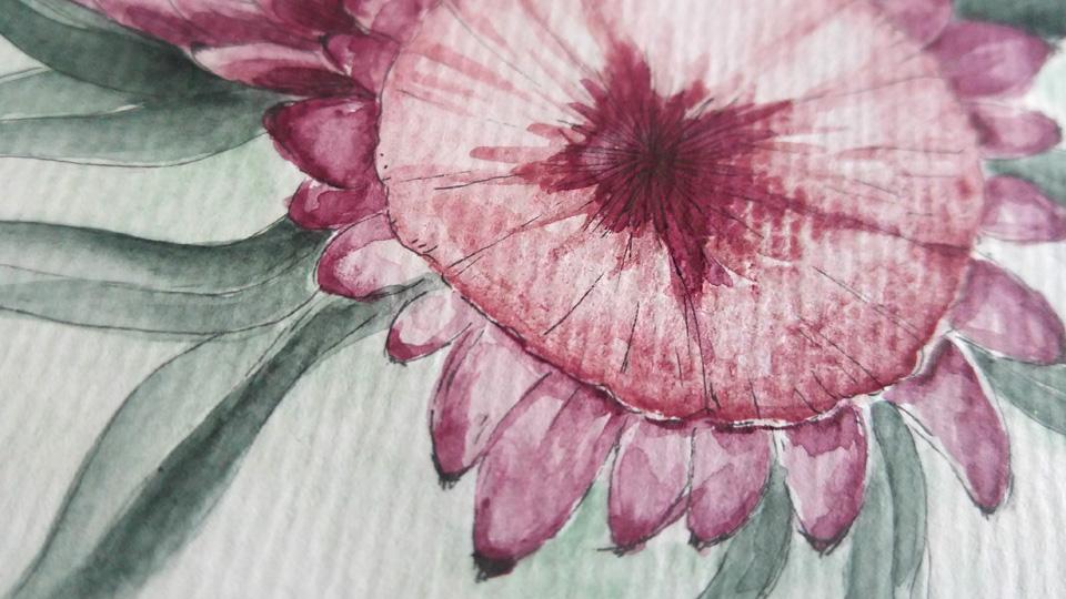 Potters Pink ist eine granulierende Farbe von Schmincke Horadam - was je nach Papierstruktur einen speziellen Effekt zeigt.