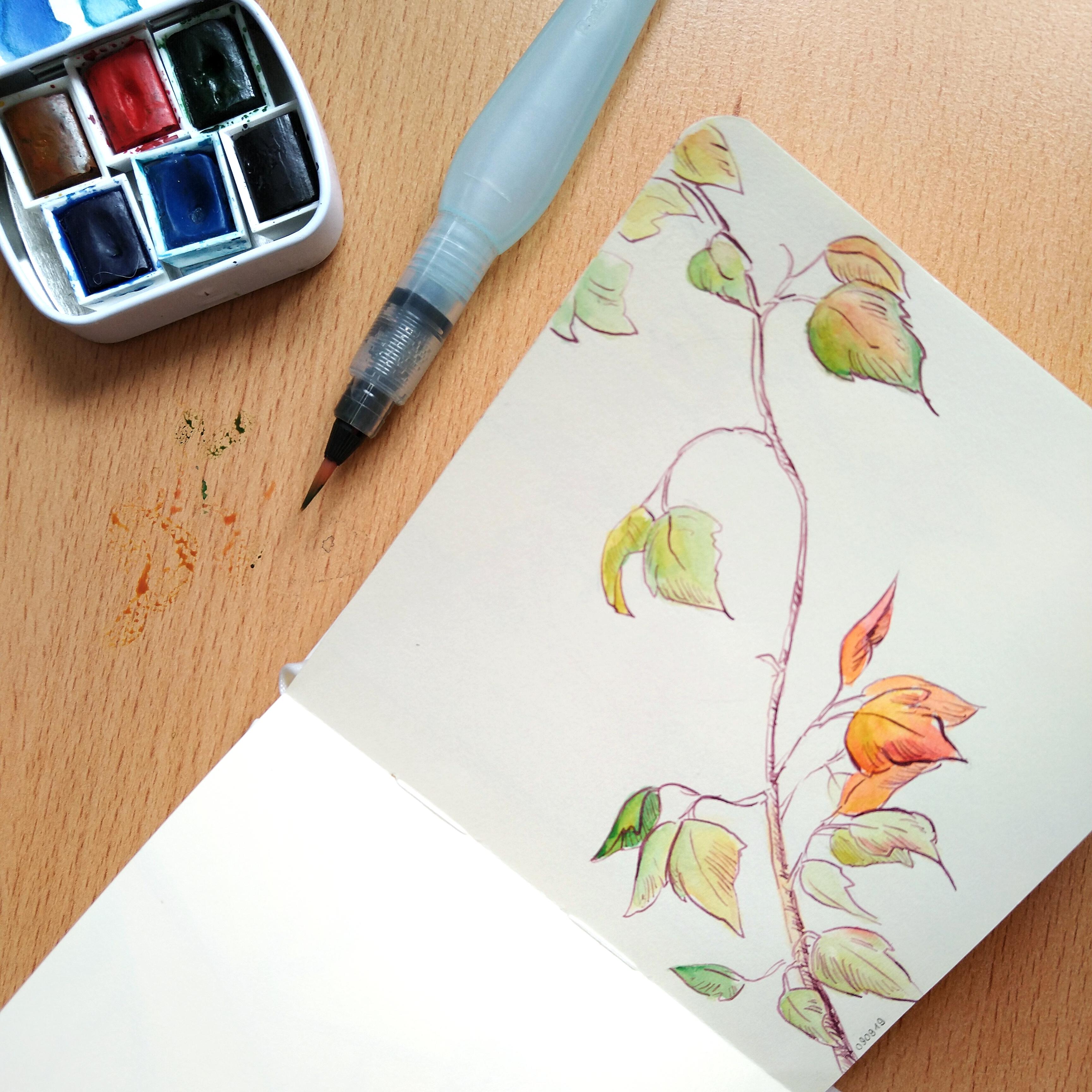 Die ersten Herbstfarben im Skizzenbuch.