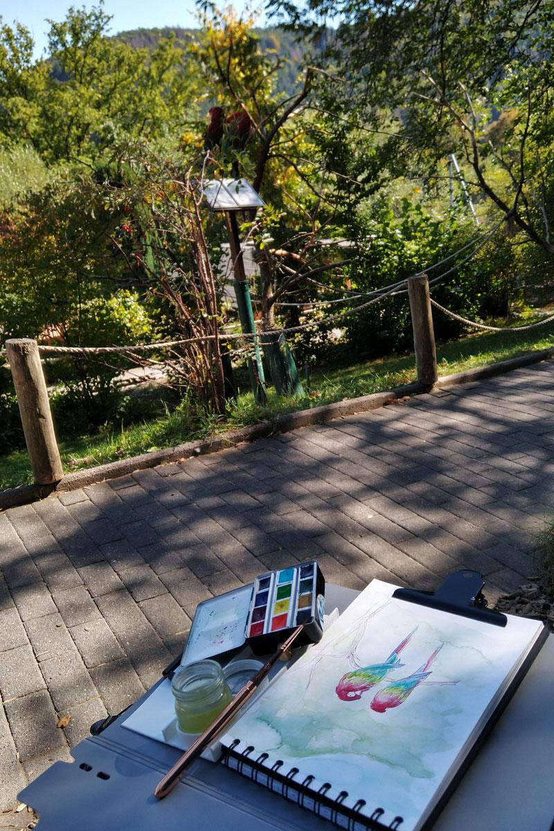 """Mein """"Setting"""" beim Zeichnen der Grünflügelaras."""