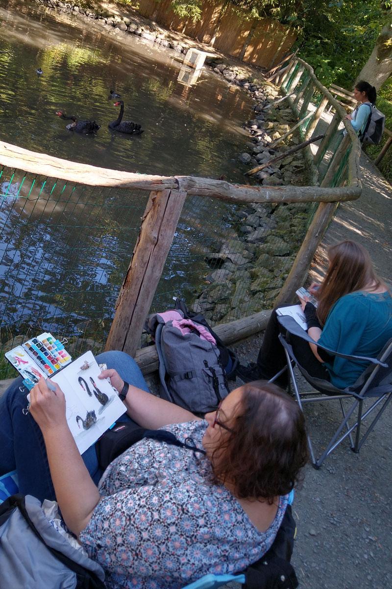 Angelika und Johanna zeichnen die schwarzen Schwäne.