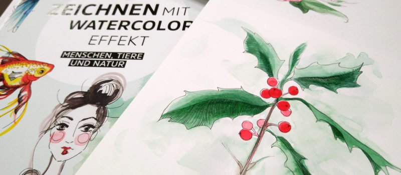 Bei der Stechpalme haben nur die Blätter und der Stiel Linien erhalten. Die Beeren dafür umso mehr Farbe.