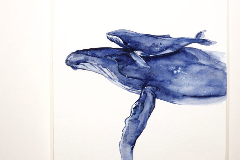 """Limitierter Print """"Ich trage Dich"""" Buckelwale in Aquarell, Detail"""