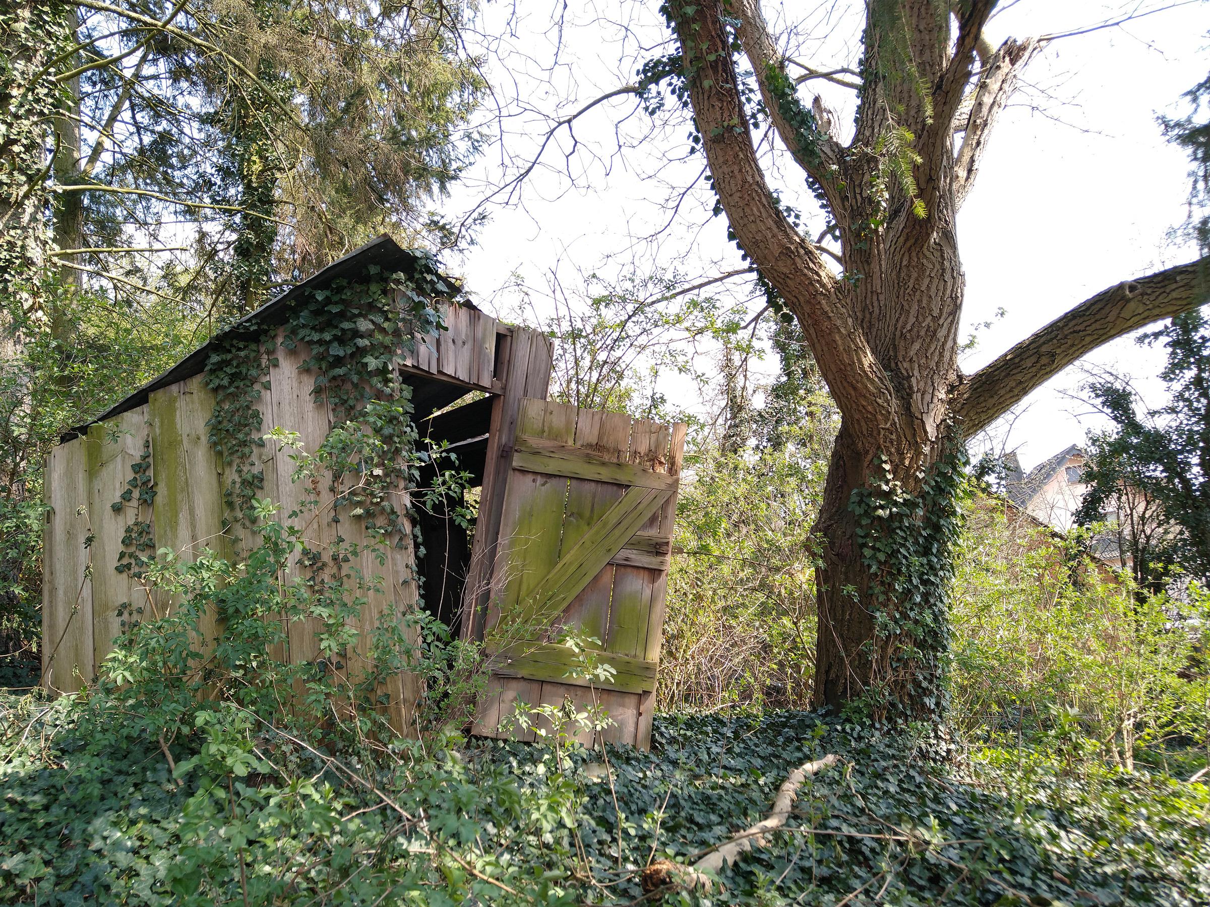 Tante Hildas Hütte - Fotovorlage für DrawThisInYourStyle