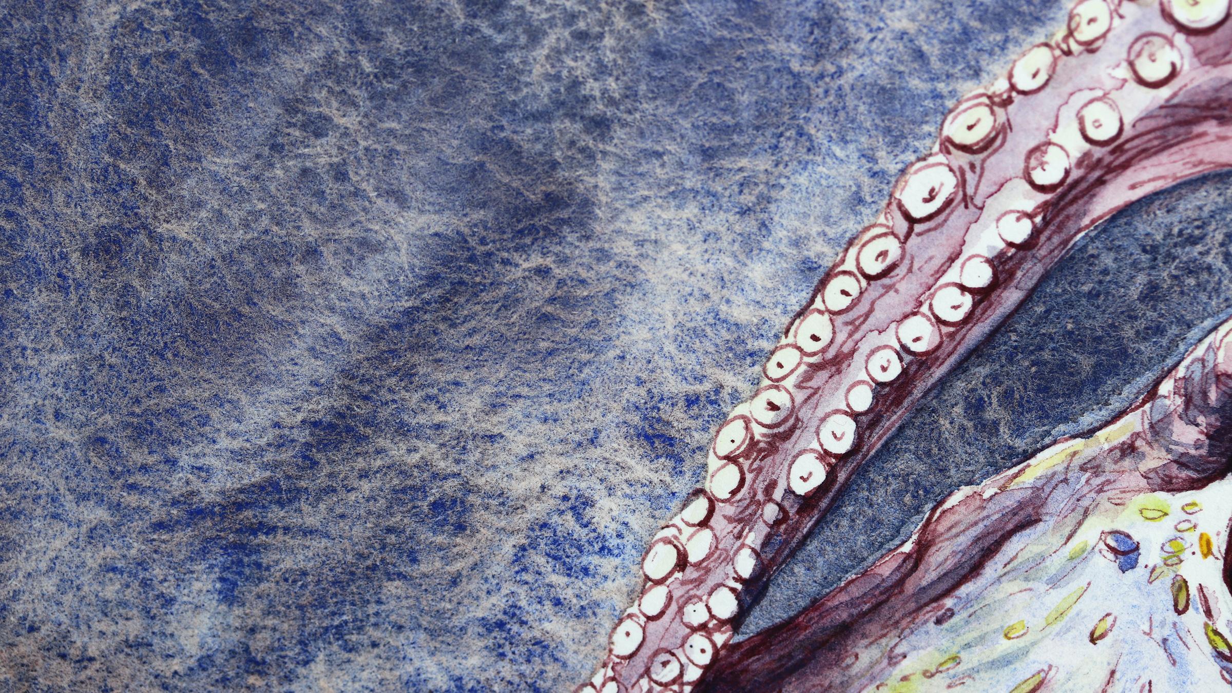 Granulierende Aquarellfarbe – Schmincke Sonderedition: Oktopus mit Horadam Aquarell Supergranulierend Tiefsee Violett (Octupus with Special Edition Supergranulating Deep sea violet)