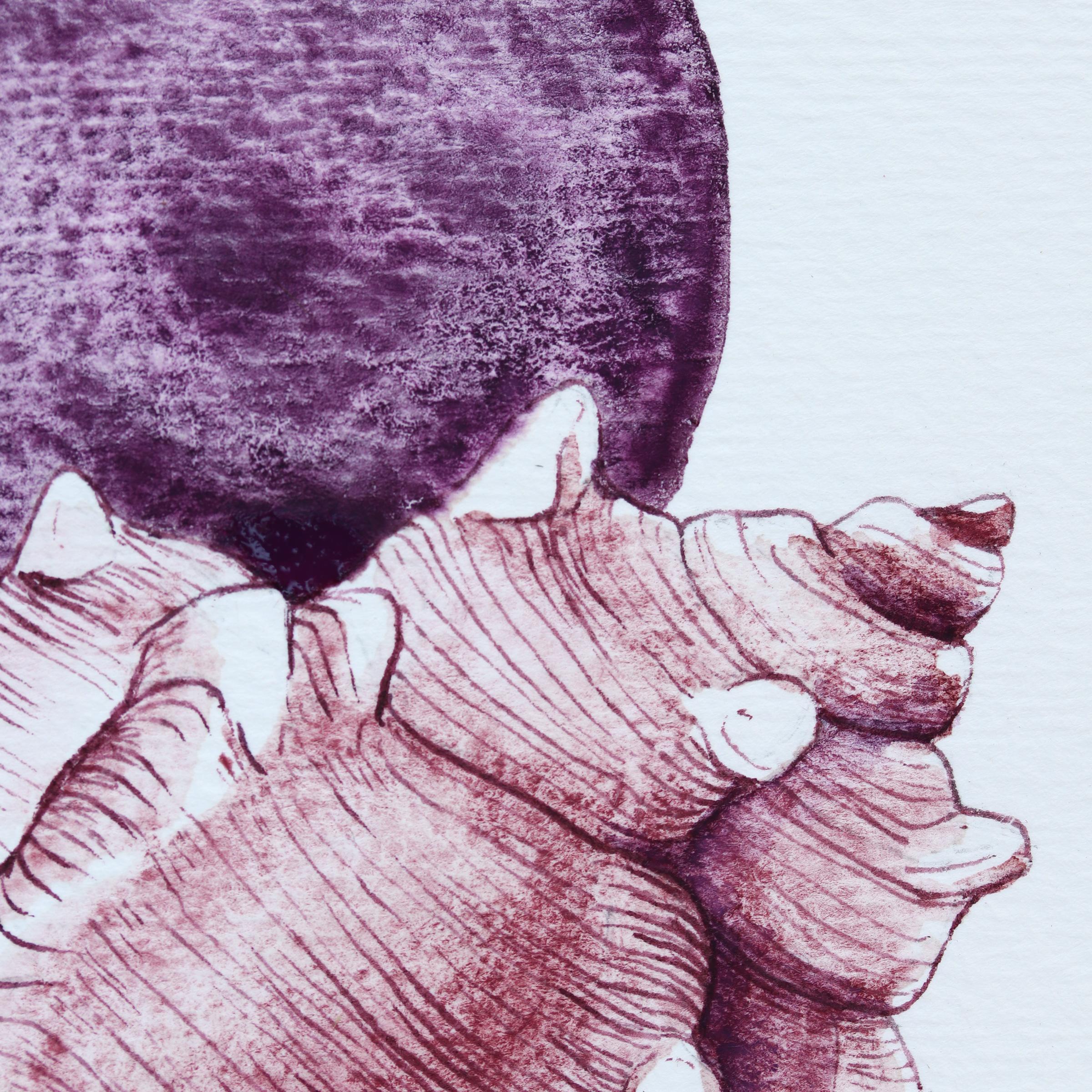 Granulierende Aquarellfarbe – Purpurschnecke: Schmincke Potters Pink und Daniel Smith PrimaTek Purpurite Genuine Detailansicht