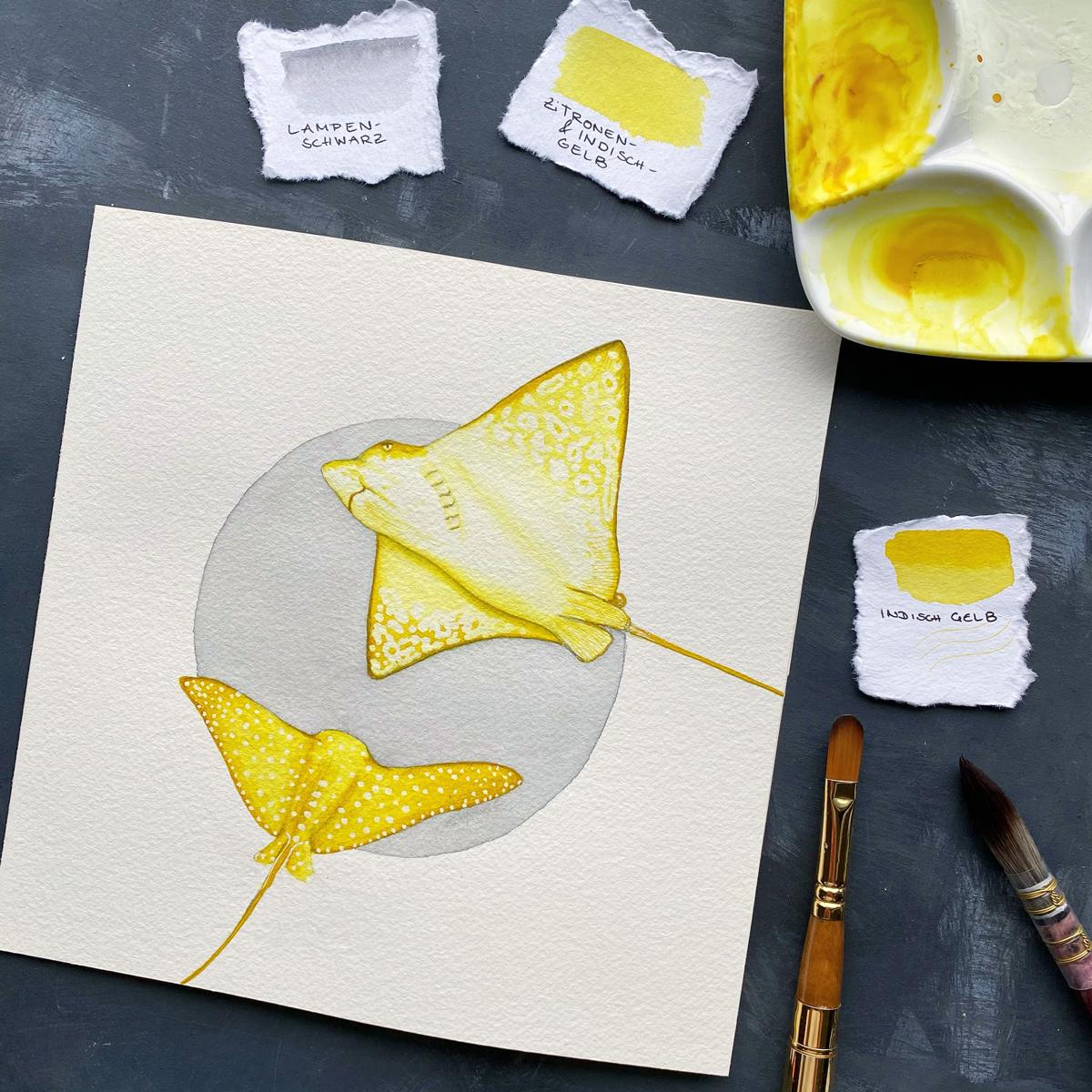 Zwei Rochen in Gelb schwimmen vor einem hell grauen Kreis.