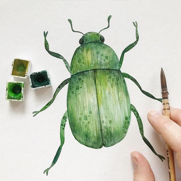 Verschiedene Grüntöne ergeben den leuchtenden Käfer.