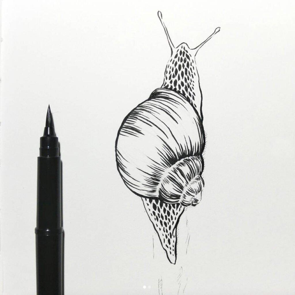 Inktober Zeichnung einer Schnecke mit dem Pentel Pocket Brush